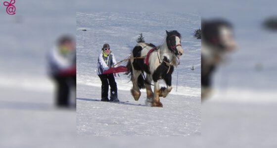Skijoring00